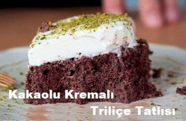 Kakaolu Kremalı Triliçe Tatlısı 1