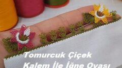Tomurcuk Çiçek Kalem İle İğne Oyası Modeli