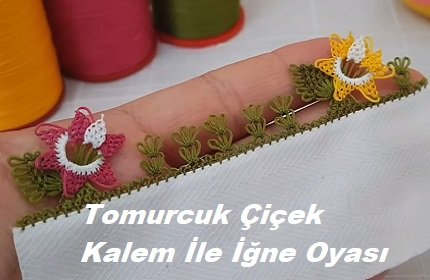 Tomurcuk Çiçek Kalem İle İğne Oyası Modeli 1