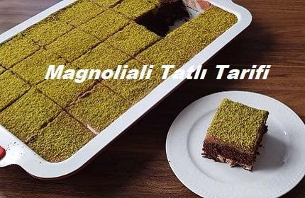 Magnoliali Tatlı Tarifi 1