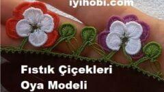 Fıstık Çiçekleri Oya Modeli