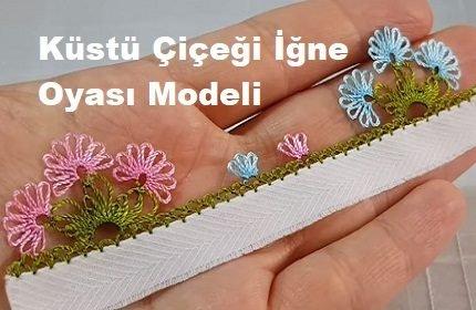 Küstü Çiçeği İğne Oyası Modeli