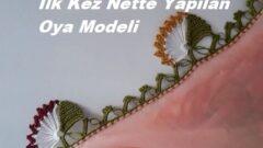 İlk Kez Nette Yapılan Oya Modeli