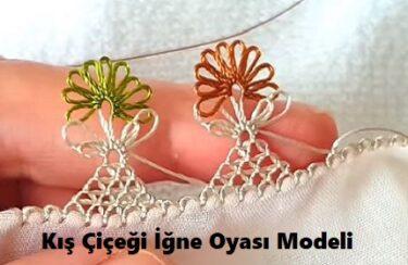 Kış Çiçeği İğne Oyası Modeli 1